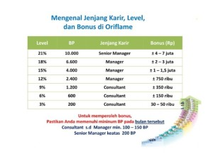 success-plan-oriflame-senior-manager